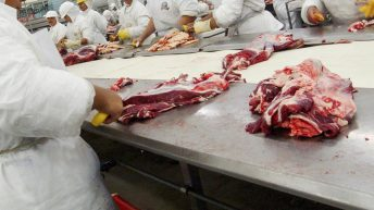 UK meat industry to look to prisoners to help staff shortages
