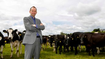 Farming and food in NI can look forward with confidence -NIFDA