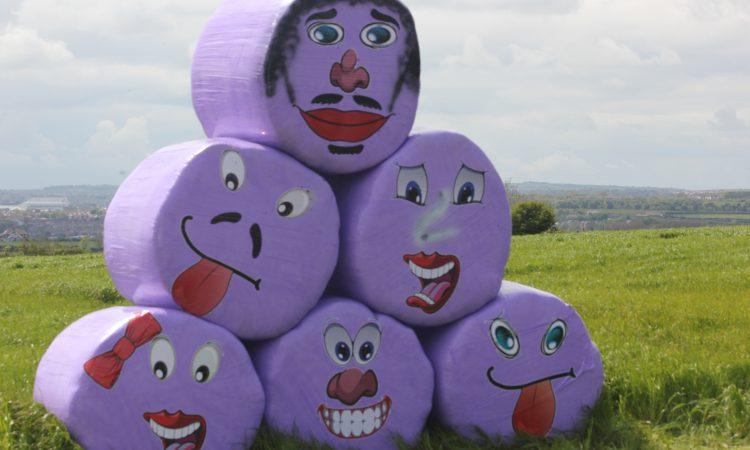 Unique purple bales raise £45,000 for children's charity