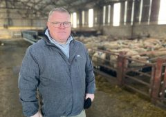 McAleer calls for financial certainty for agriculture in Northern Ireland