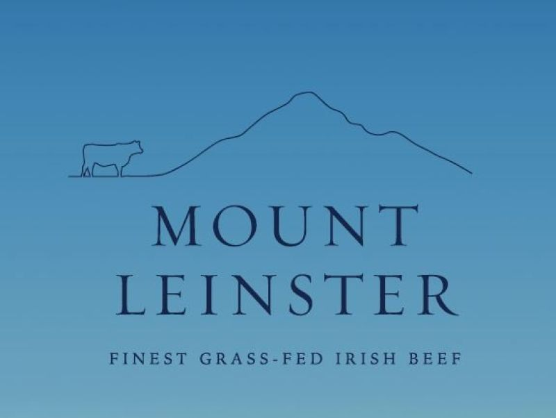 Mt Leinster