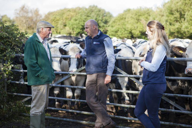 Tech team talking with farmer