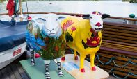 Are these the most travelled sheep  in the Lake District?