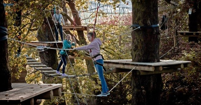 A family navigate along the high-wires rope course