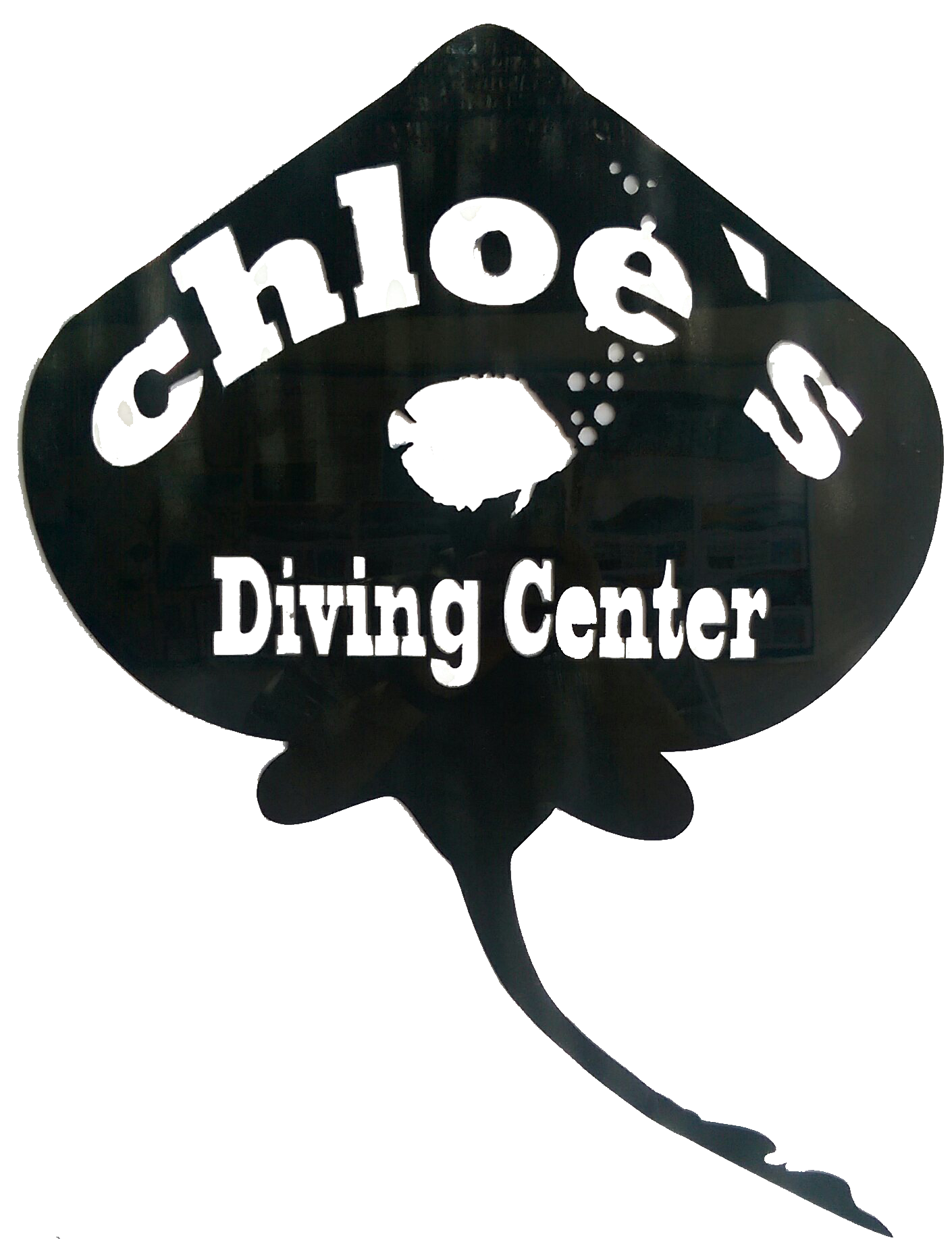 Chloe's Diving