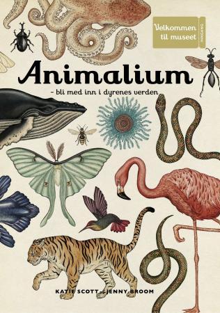Animalium 1