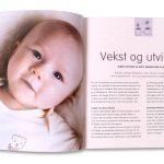 SPE-boken_INS-vekst_2020