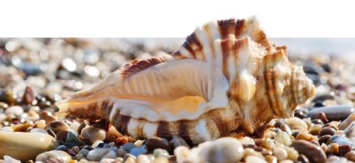 How many pebbles on the beach?