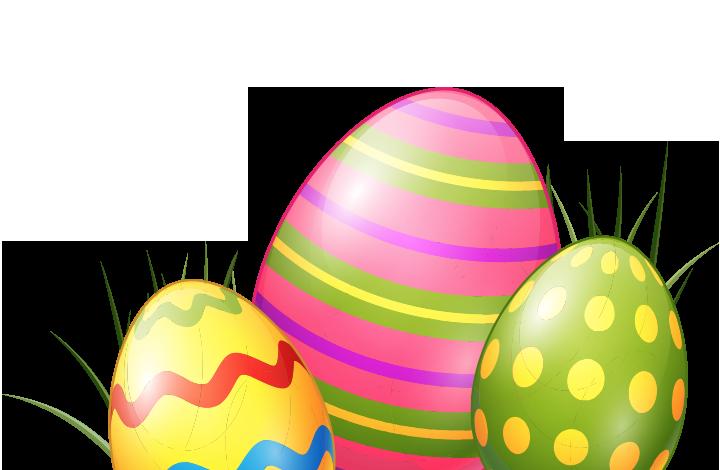 Are eggs alive?