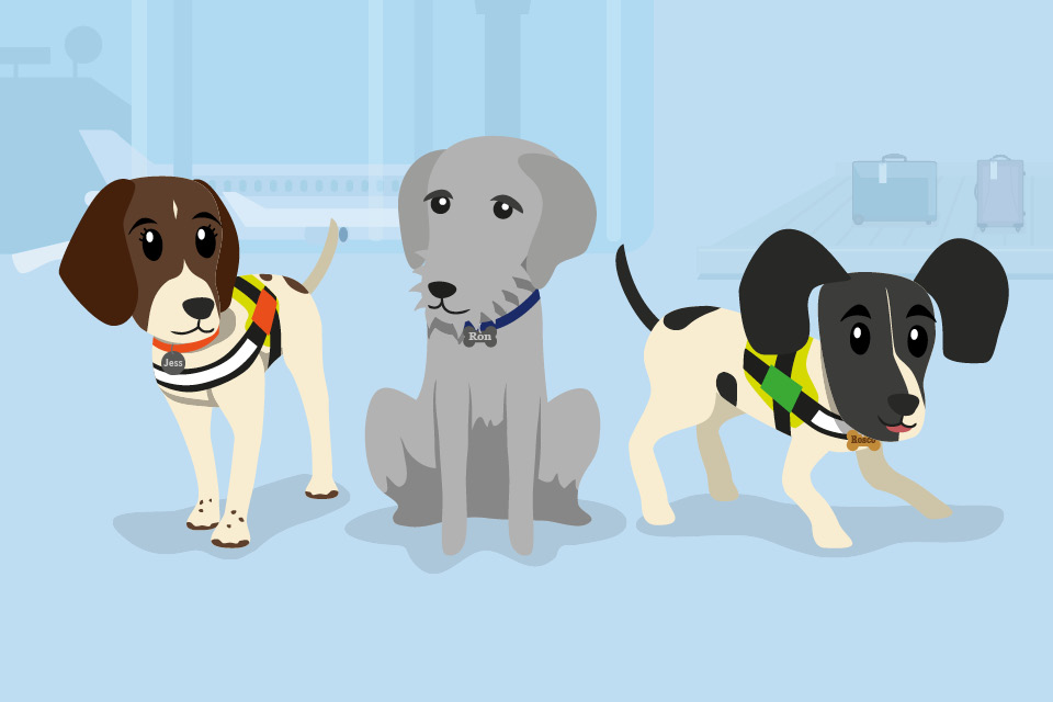 The three dog characters posing on a blue background.