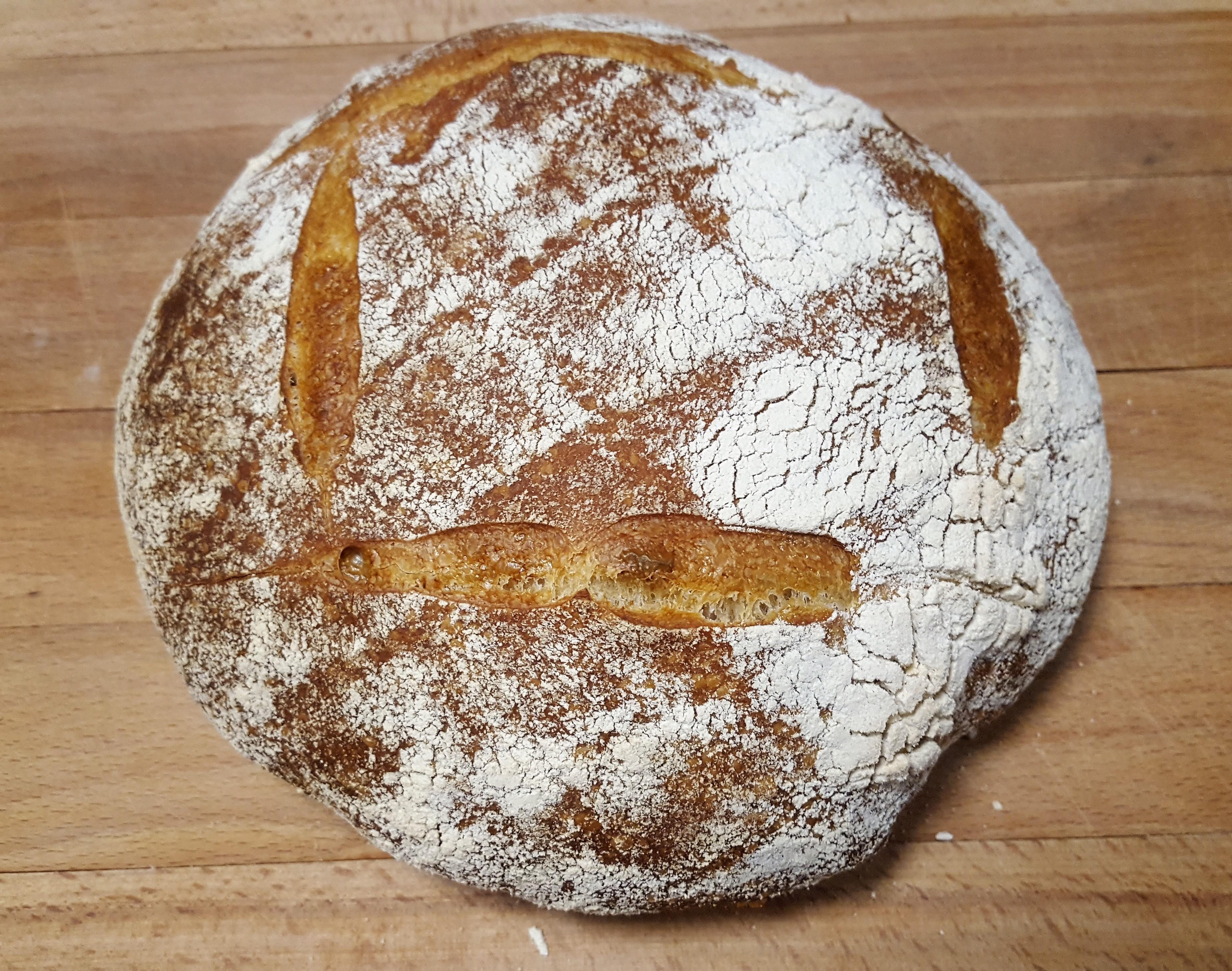 Sourdough Starter and Homemade Sourdough Bread