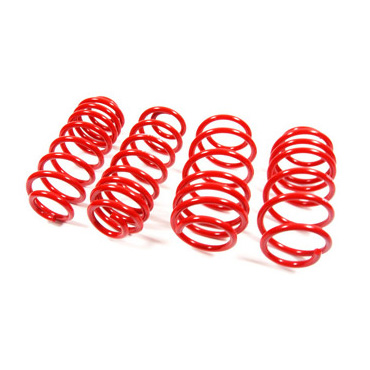 cobra lowering springs.