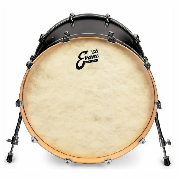 Evans Calftone EQ4 Bass Drum Head 18""