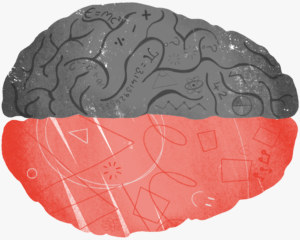 illustration of brain showing left and right sections