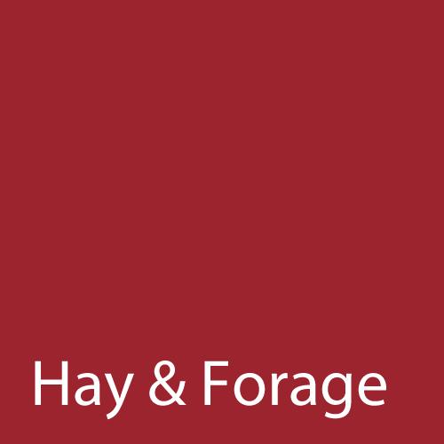 Hay & Forage