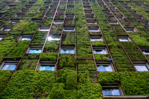 Wall,Of,High-rise,Building,Covered,With,Plants,,Reflection,Of,Sunlight