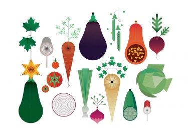 Sally Caulwell | Folio illustration agency