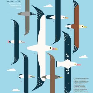 World Albatross Day