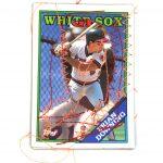 Baseball Card 3