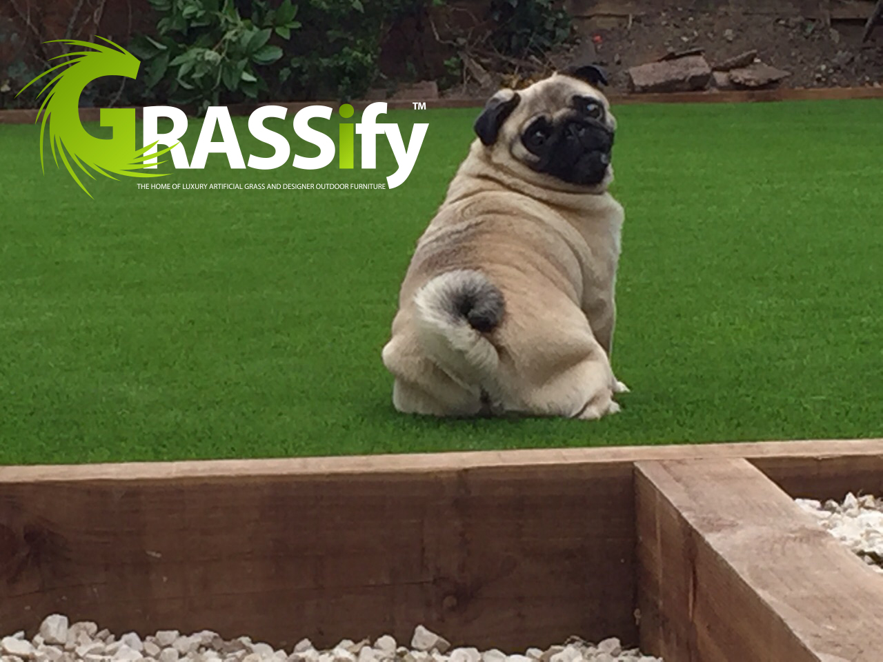 Astro Turf for Dogs, Artificial Grass for Dogs, Artificial Grass for Gardens