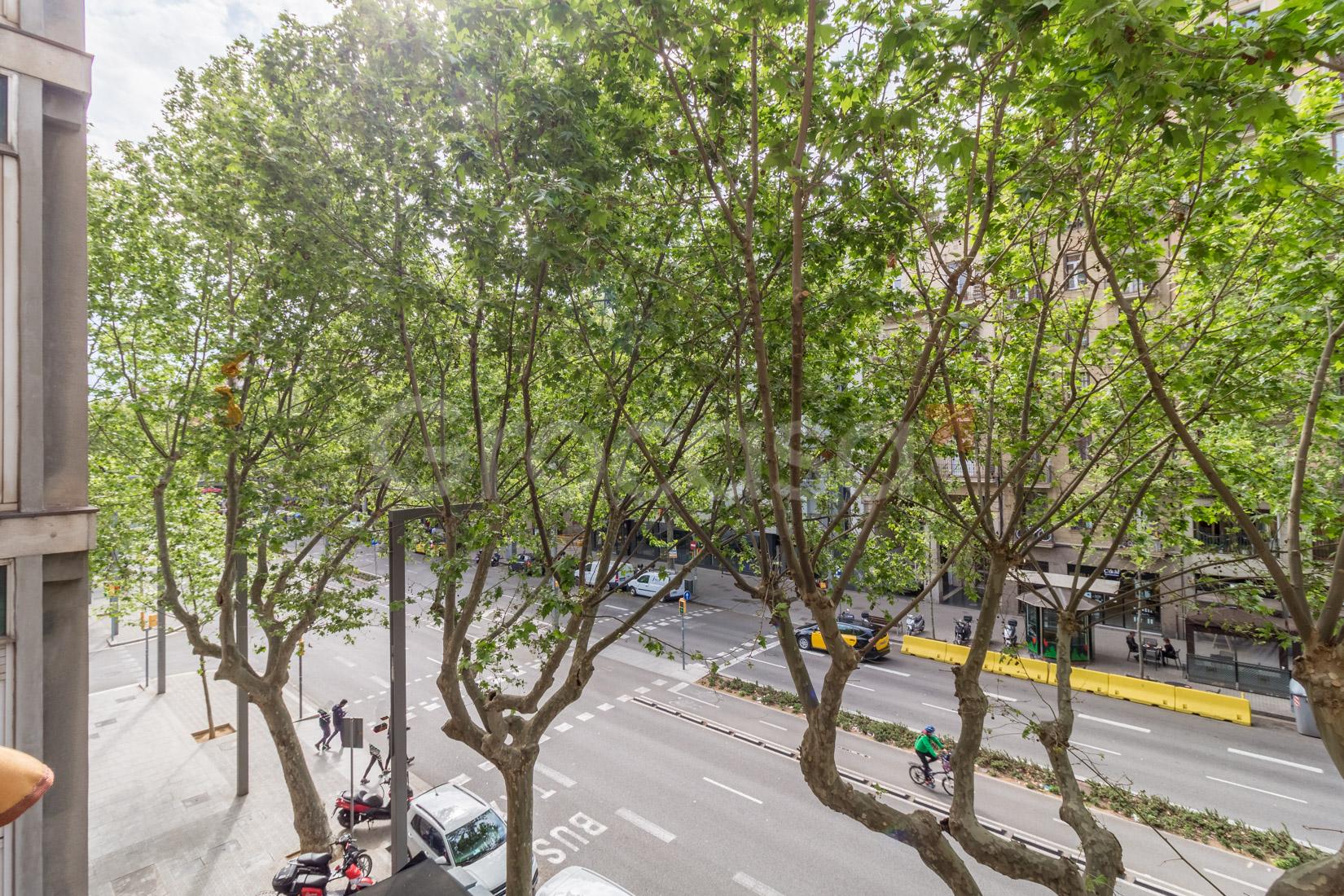 Piso en Sant antoni en Barcelona en Venta por 345.000€