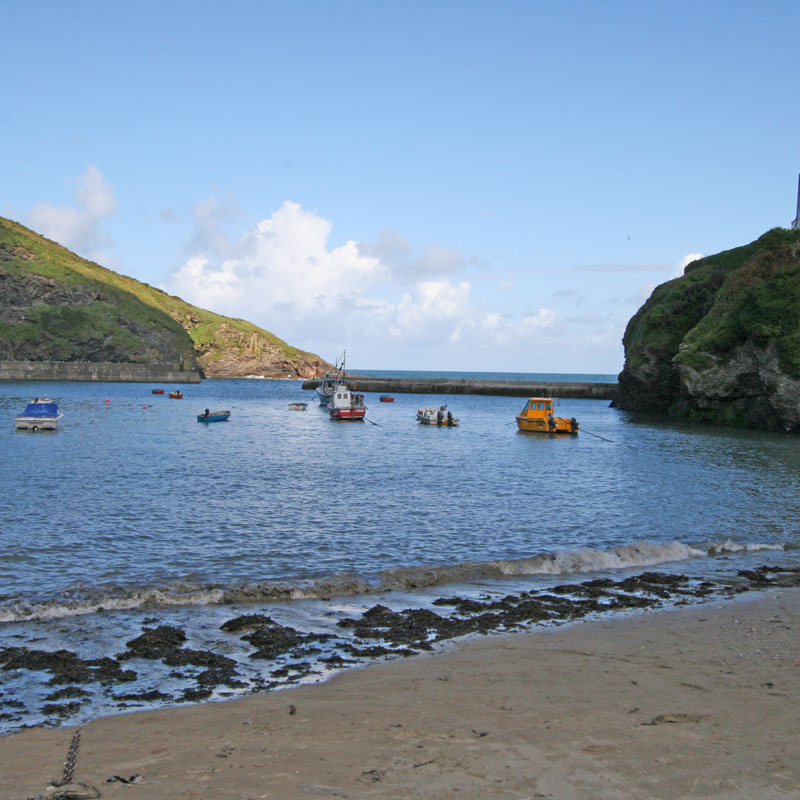 Rockpools with Harbour Holidays