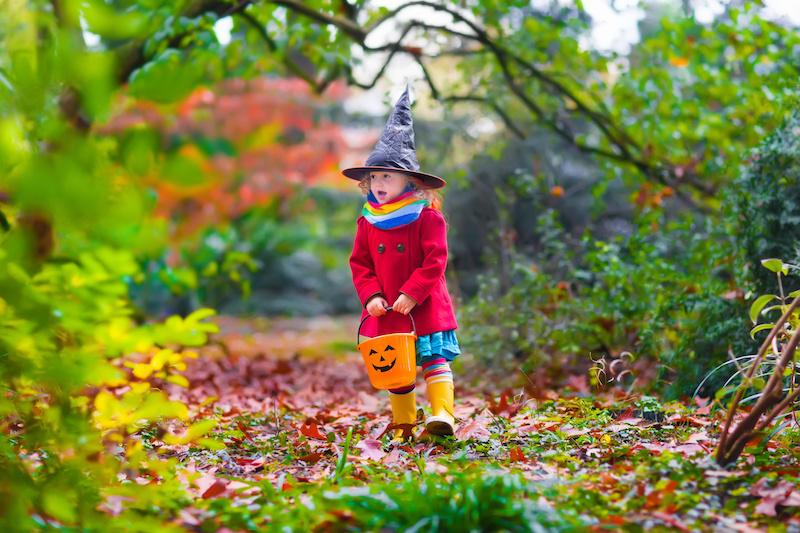 Halloween Half Term Padstow
