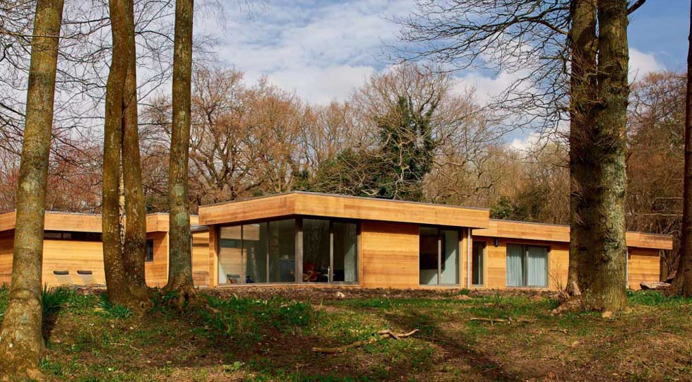A remodelled timber-clad bungalow in a woodland setting