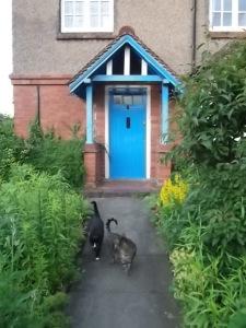 Natasha Brinsmead front door to home