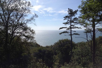 the view from the site near Lyme Regis