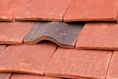 Tudor tiles bat mitigation tile