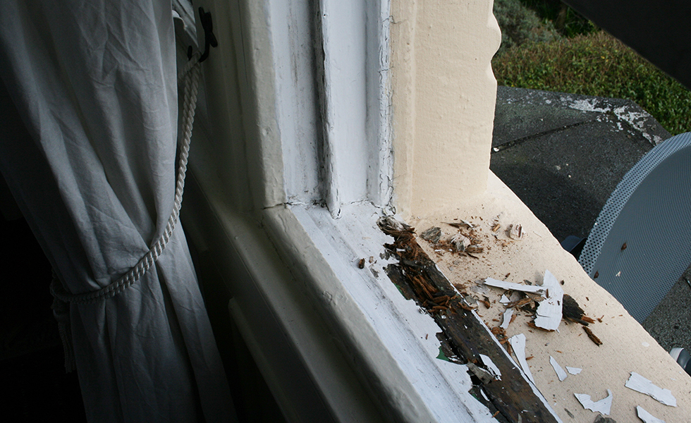 Window Repair Guide: What's Involved and How Much Does it Cost