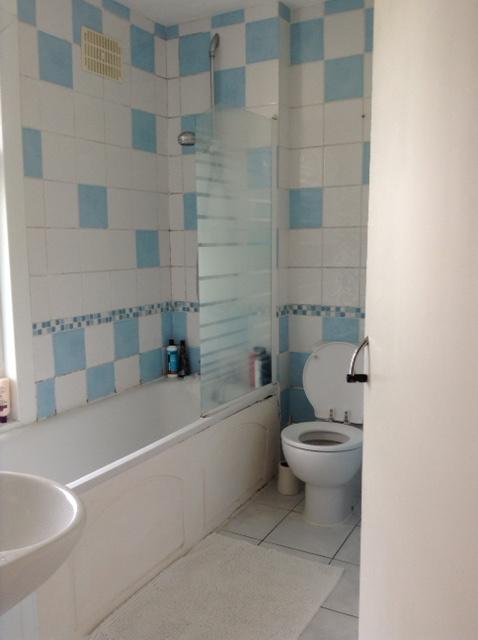 dyson-bathroom-existing