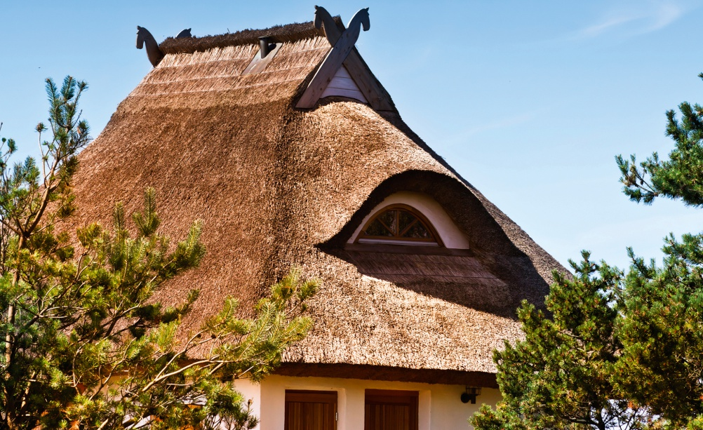 eyebrow thatched roof