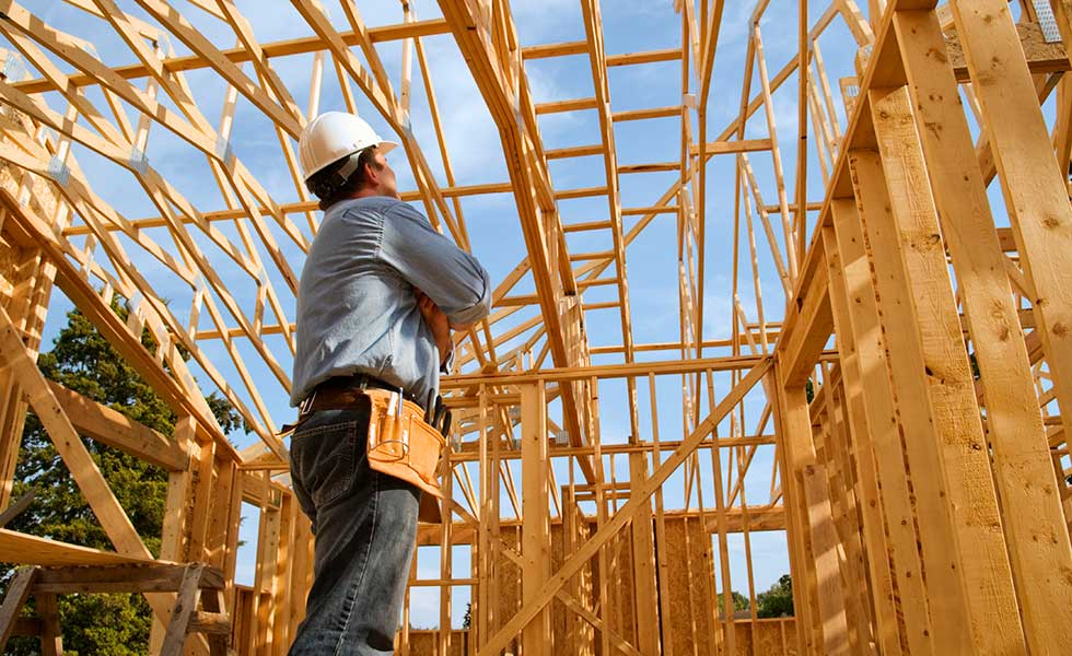 man assessing a timber frame structure
