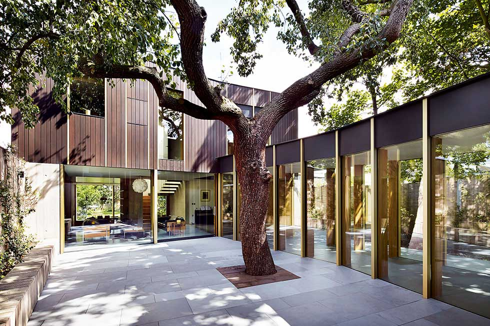 Courtyard self build with 100 year old pear tree in London