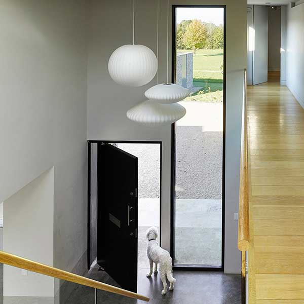 white modern hallways and landing with wooden flooring, hanging white lamp shades and front door open with white dog looking out