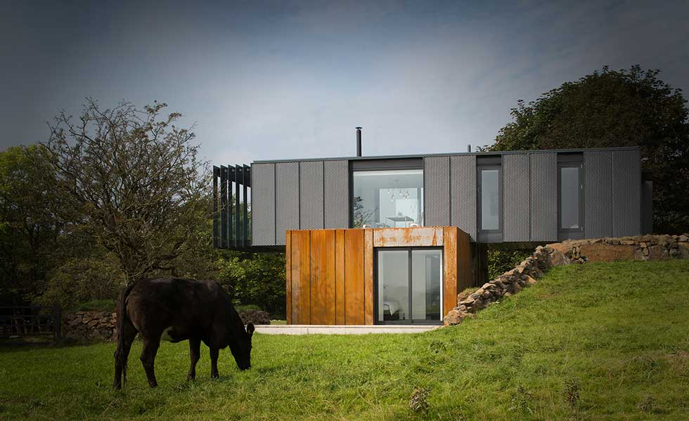 shipping container home in countryside with cow