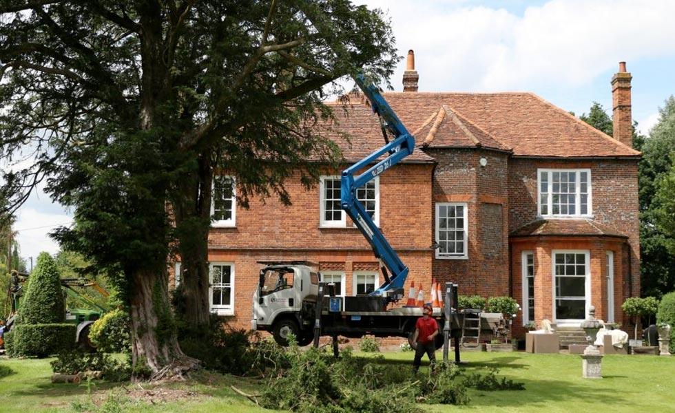 Braemar tree preservation