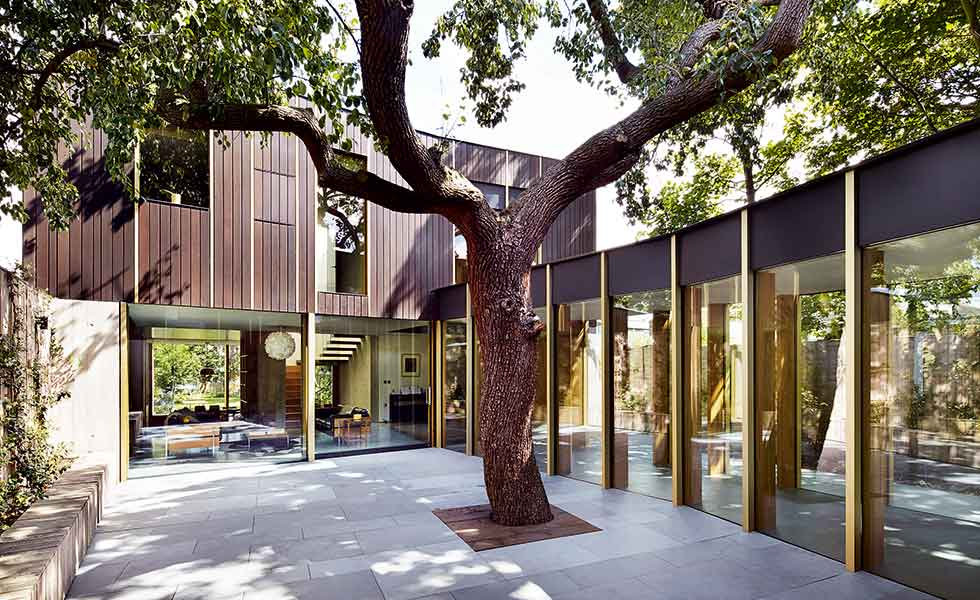 This contemporary timber-clad home in London is built around a 100 year old pear tree