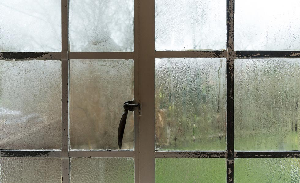 damp condensation on old windows
