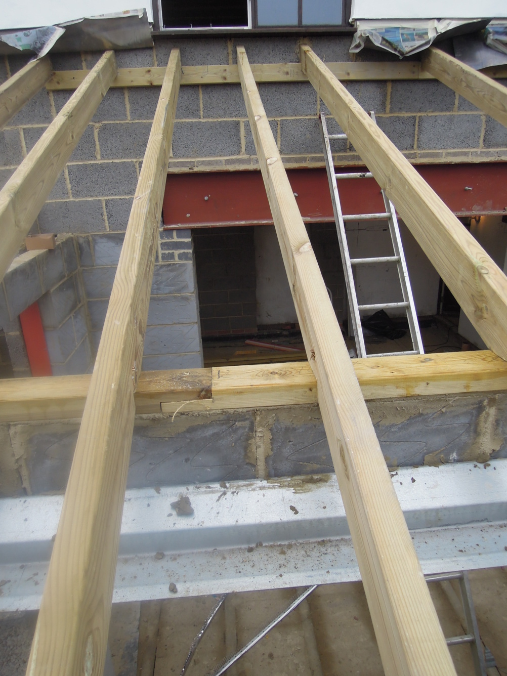 rafters of an extension
