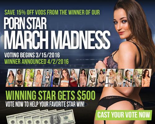 Gamelink.com, Porn Star Madness Tournament