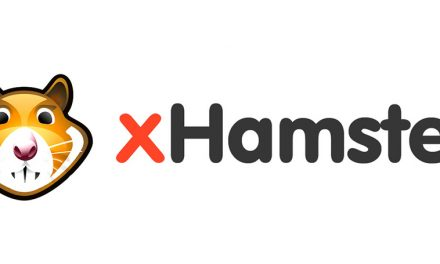 xHamster release real Election Day stats