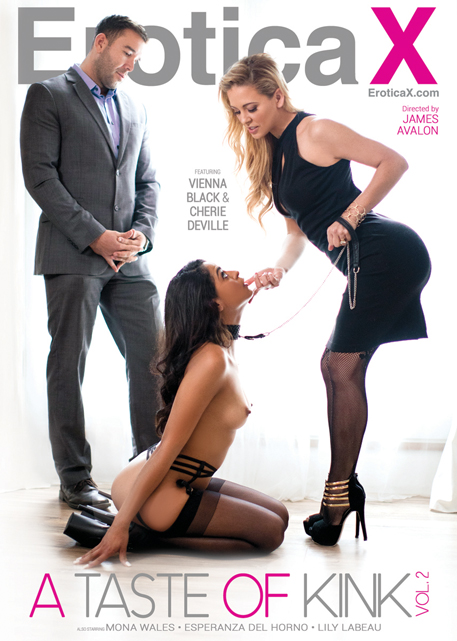 "BDSM series ""A Taste of Kink 2,"" from leading couples studio Erotica X"