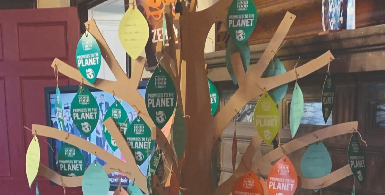 We've started 2020 with thought-provoking 'Planet Promise' trees
