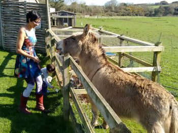 Merlin Farm: Giving a New Meaning to a Family Friendly Holiday
