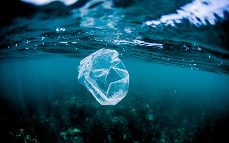Plastic is putting our children's health at risk and no one is talking about it, says Frederikke Magnussen