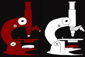 black & red micros
