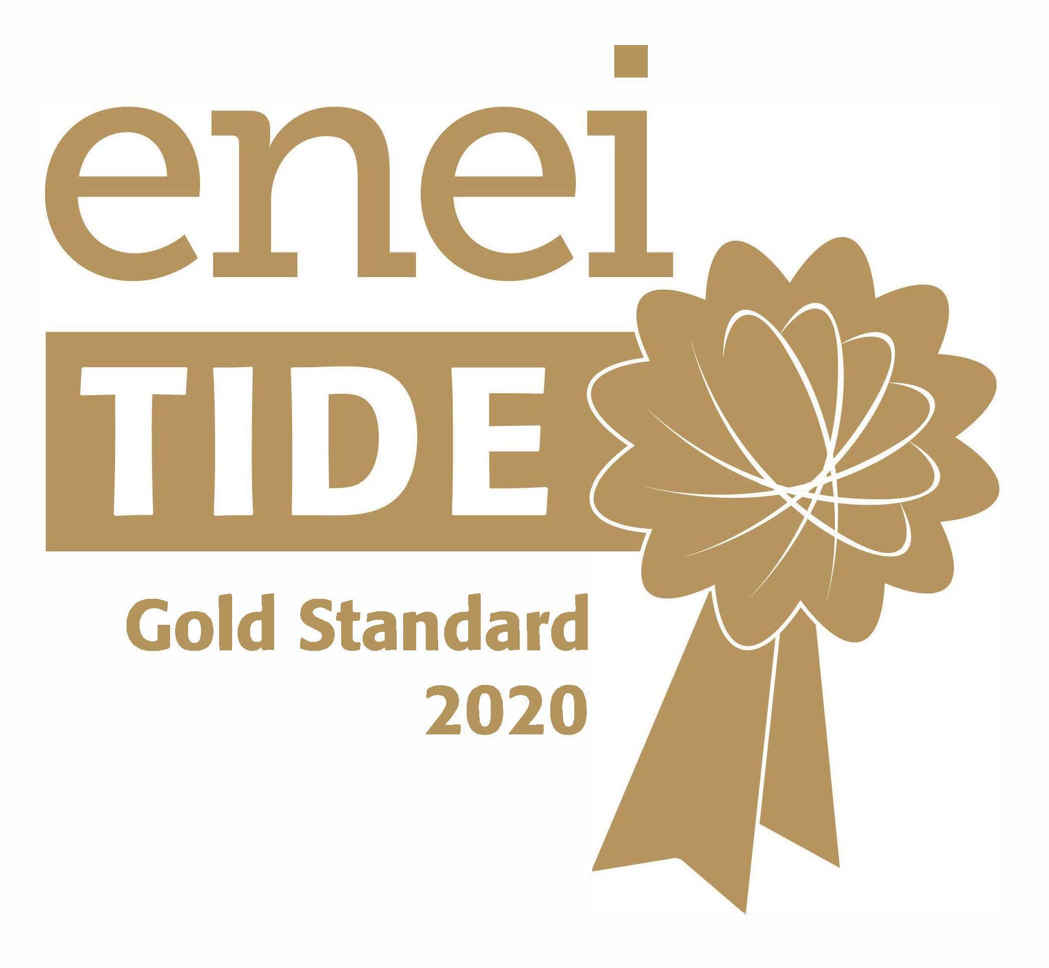 ENEI TIDE (Talent Inclusion & Diversity Evaluation) gold standard award